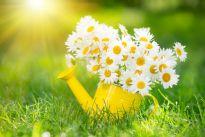 8 sposobów na wiosenne porządki