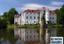 WGN pozyskał do sprzedaży zabytkowy pałac
