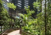 Ekologiczne wieżowce, czyli miejska dżungla w centrum metropolii