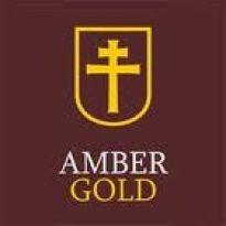 Amber Gold – pomysł na biznes