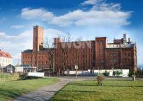 Absolutnie wyjątkowa sprzedaż historycznego młyna w Dzierżoniowie