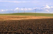 Ziemia rolna drożeje na całym świecie