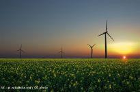 Nowe farmy wiatrowe w Polsce