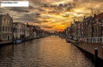 Holandia sprowadza złoto