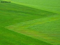 Przeniesienie własności gospodarstwa rolnego a podatek