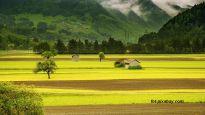 Podatek za obrót gruntami rolnymi
