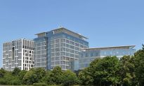 Omida Logistic w Olivia Business Centre