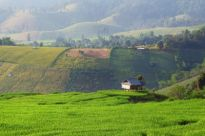 Nawet 2 mld zł transakcji na rynku gruntów inwestycyjnych
